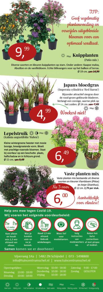 aanbieding planten Tuincentrum Schel2