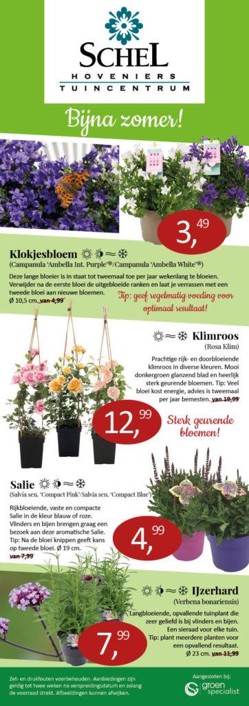 Tuincentrum Schel planten aanbiedingen