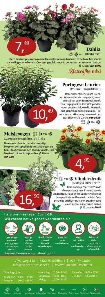 Tuincentrum Schel vaste plantenaanbiedingen
